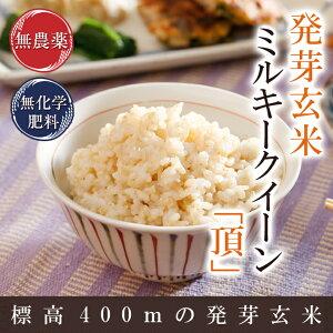 『キャッシュレス5%還元』発芽玄米の無農薬送料無料無農薬・無化学肥料栽培無農薬ミルキークイーン「頂」アブシジン酸は検出されませんでした!限定米 5kg真空パック令和1年福井県産米