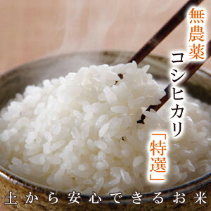 『キャッシュレス5%還元』無農薬のお米送料無料無農薬・無化学肥料栽培無農薬コシヒカリ「特選」限定米 10kg(5kg×2袋)令和元年福井県産米・食味鑑定士認定米
