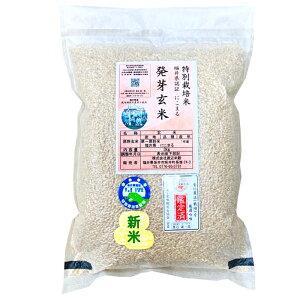 『キャッシュレス5%還元』発芽玄米の無農薬送料無料無農薬・無化学肥料栽培にこまる「特選」アブシジン酸は検出されませんでした!限定米 3kg真空パック令和元年産米・食味鑑定士認定