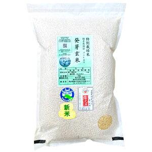 『キャッシュレス5%還元』発芽玄米の無農薬送料無料無農薬・無化学肥料栽培無農薬コシヒカリ「特選」アブシジン酸は検出されませんでした!限定米 5kg真空パック令和1年福井県産米・食