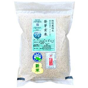 『キャッシュレス5%還元』発芽玄米の無農薬送料無料無農薬・無化学肥料栽培コシヒカリ「特選」アブシジン酸は検出されませんでした!限定米 3kg真空パック令和1年福井県産米・食味鑑定