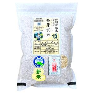 『キャッシュレス5%還元』発芽玄米の無農薬送料無料無農薬・無化学肥料栽培ミルキークイーン「頂」アブシジン酸は検出されませんでした!限定米 2kg真空パック令和1年福井県産米・食味