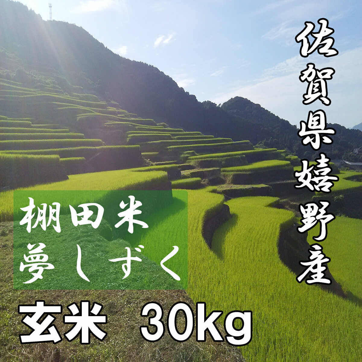 【30年産 新米】【送料無料】佐賀県産 棚田米 夢しずく 玄米30kg