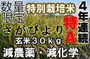 【28年産】【1等米】【さがびより玄米30kg】【5割以上農薬減・5割以上化学肥料減】【特別栽培米】 九州 佐賀県 【0…
