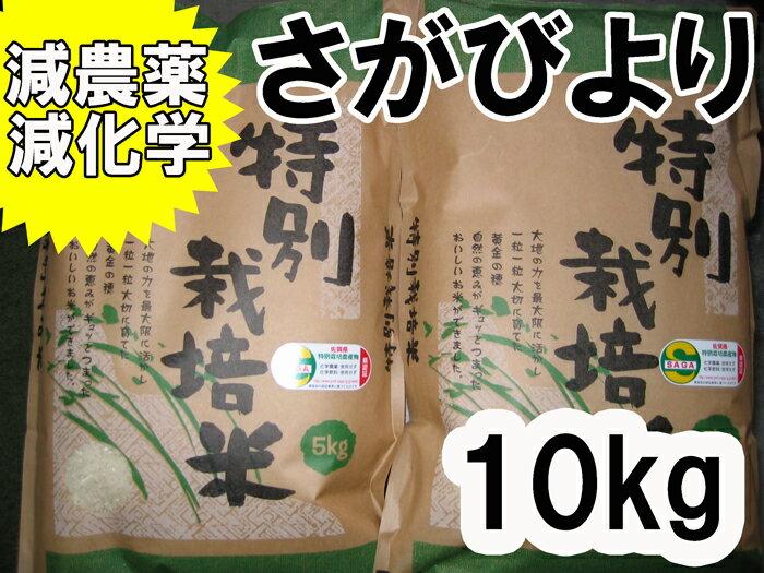 【29年産 新米】【佐賀から直送 証明認証シール付】【特別栽培米】5kg×2】 【5割以上減農薬・減化学さがびより】【送料無料】