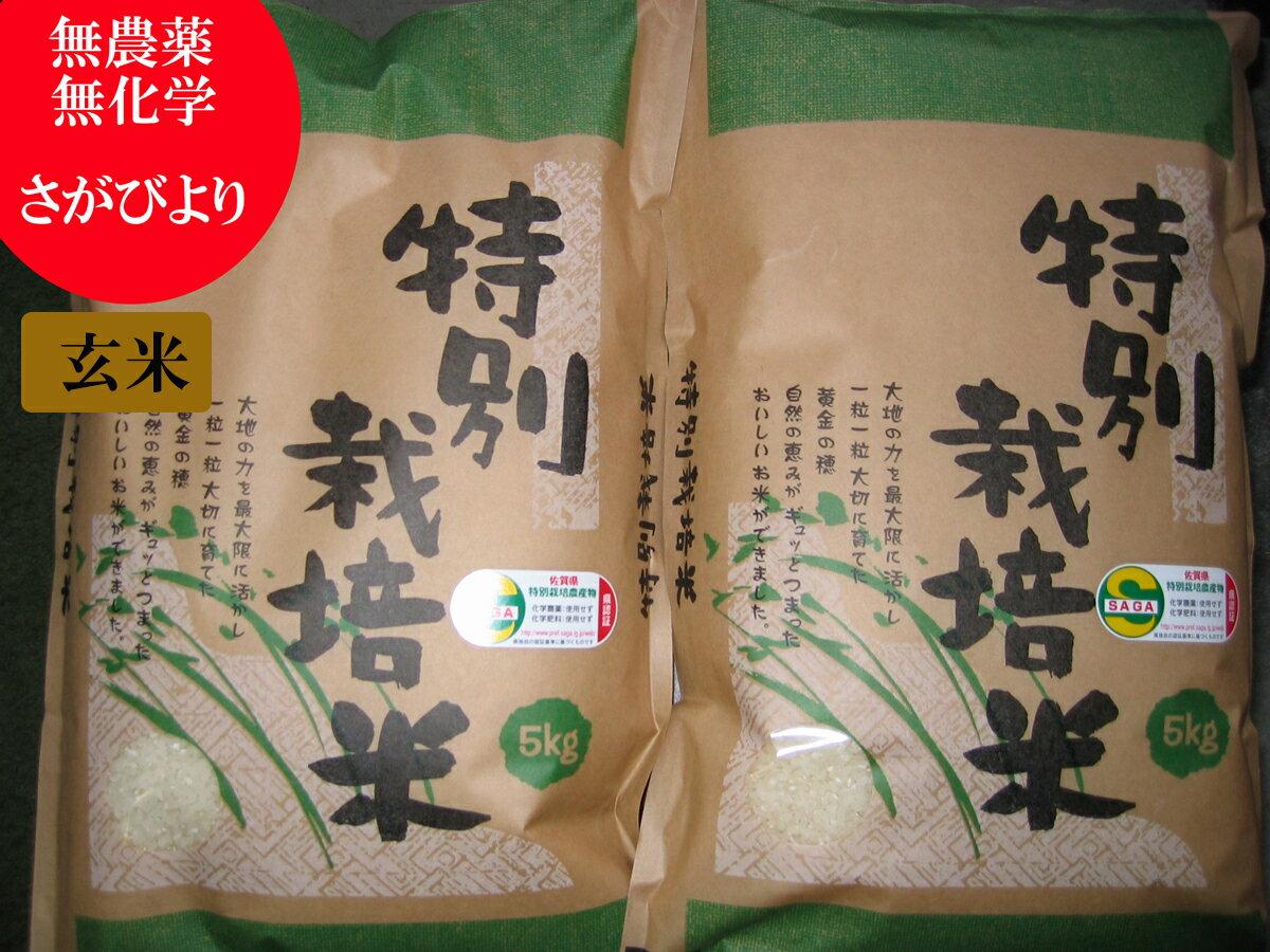 【30年産】【玄米】【無農薬】【無化学肥料】 さがびより 5kg×2 特別栽培米 九州 佐賀県産【農薬不使用・化学肥料不使用】