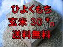 【30年産 新米】【1等米限定】 佐賀県産もち米 ヒヨクモチ 玄米 30kg【ひよくもち】【九州産】【日本三大もち米処…