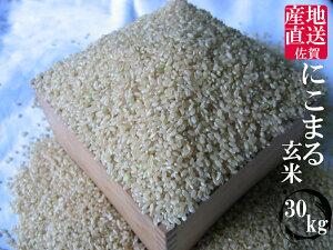 【送料無料】【令和元年産】九州 佐賀県白石産 にこまる 玄米30kg【小分け無料】【精米無料】【10P30Nov14】