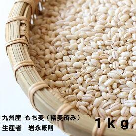 【メール便発送】【令和元年産 新麦】【精麦済み】岩永さんちのもち麦 国内産(九州産)1kg【送料無料】