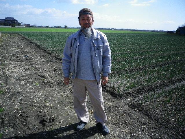 【29年産】【送料無料】佐賀県白石産森さんちの有機肥料で育った「さがびより」 5kg