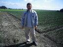 【28年産】【送料無料】佐賀県白石産森さんちの「さがびより」 5kg
