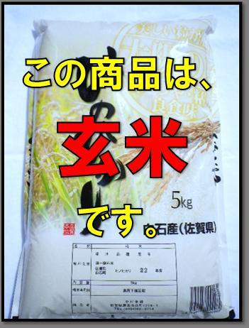 【玄米】【送料無料】29年産 佐賀県白石産有機肥料で作った米森さんちのヒノヒカリ 5kg