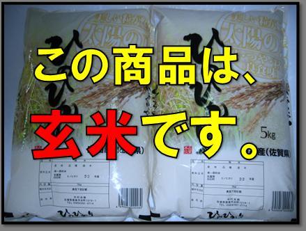 【玄米】【29年産 新米】 佐賀県白石産森さんちのヒノヒカリ 5kg×2【05P06jul13】