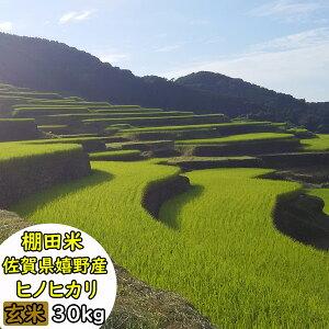 【令和2年産】【送料無料】佐賀県産 棚田米 ヒノヒカリ 玄米30kg【米 お米】