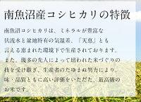 【新米】令和2年度産新潟県南魚沼産コシヒカリ1等米(JA魚沼みなみ)玄米30kg(精米無料)(1等米)(送料無料但し北海道九州四国沖縄を除く)