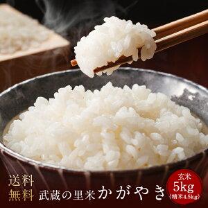 武蔵の里米 かがやき 玄米5kg(精米無料)(農家直米)(送料無料 但し北海道 中国 九州 四国 沖縄 離島を除く)