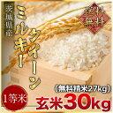 令和2年度産 送料無料 茨城県産ミルキークイーン 玄米30kg(精米無料)(1等米)(送料無料 但し北海道 中国 九州…