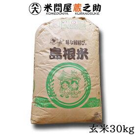 島根県産 きぬむすめ 29年産 玄米 30kg 【送料無料(一部地域除く)】
