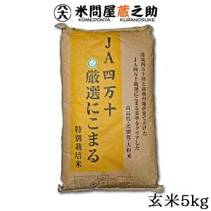 新米 にこまる 5kg 高知県産 JA四万十 玄米 令和元年産 送料無料