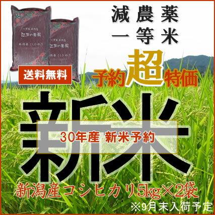 新米予約 30年産 新米 10kg 送料無料 特別栽培米 新潟 コシヒカリ or 贅沢ブレンド「江戸の米蔵」一等米 新米5kg×2個お選びいただけます。( 玄米 白米 お米 10kg 送料無料 )