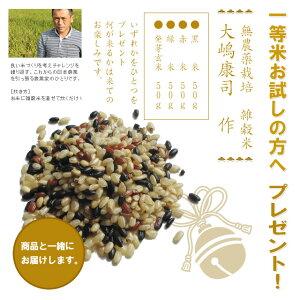 特別栽培米(減農薬・減化学肥料)新潟県産コシヒカリ5kg