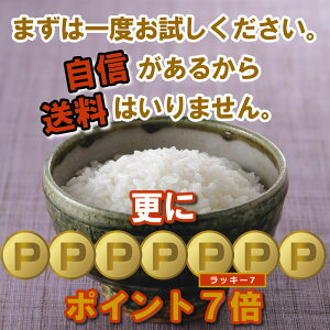 特別栽培米(減農薬・減化学肥料)新潟県産コシヒカリ1kg