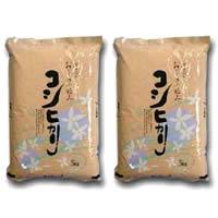 《25年産【新米】一等米100%使用》富山県産こしひかり5kg×2個