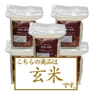 【玄米】新潟県産コシヒカリ2kg×5個 令和3年産