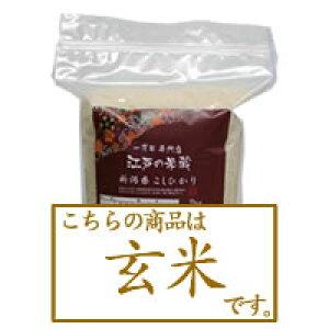 【玄米】新米 令和3年産 新潟県産コシヒカリ2kg