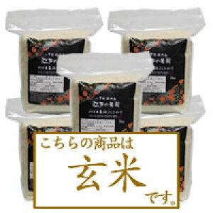 【玄米・送料無料】特別栽培米 一等米 新潟県魚沼産コシヒカリ2kg×5個
