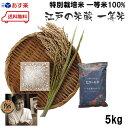 お試し初回限定 おまけ付き 江戸の米蔵 新米 人気の一等米 贅沢ブレンド「江戸の米蔵」一等米 令和1年産 白米 5kg