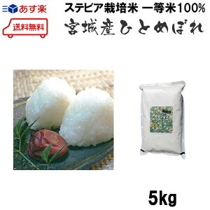 お試し初回限定 おまけ付き 江戸の米蔵 新米 人気の一等米 ステビア栽培米 宮城県産ひとめぼれ 令和1年産 白米or玄米 5kg