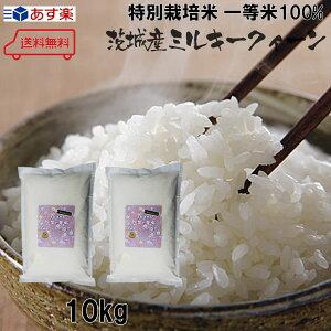 新米 令和2年産 特別栽培米(減農薬・減化学肥料) 茨城県筑西産ミルキークイーン 5kg×2個(10kg)