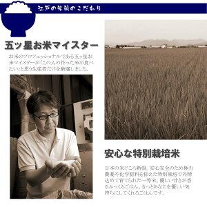 一等米新潟県産コシヒカリ1kg人気のお米お試し