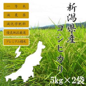 新潟県産こしひかり5kg×2個