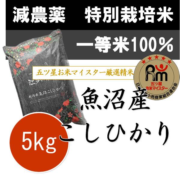 特別栽培米(減農薬・減化学肥料)一等米 新潟県魚沼産コシヒカリ5kg