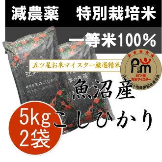 ≪*2个≫新泻县鱼池塘生产コシヒカリ活动中的5kg(10kg)