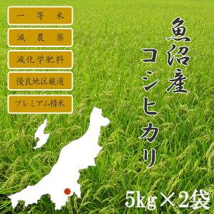 新潟県魚沼産こしひかり5kg×2個