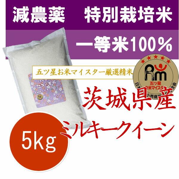 特別栽培米(減農薬・減化学肥料) 茨城県筑西産ミルキークイーン 5kg
