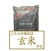 【定期購入】《玄米》新潟県魚沼産コシヒカリ5kg【初回特典31%OFF】
