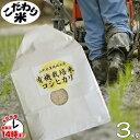 【1購入合計1個まで】【こだわり米】「有機栽培米こしひかり」(山形県置賜地方産)3kg【あす楽対応】白米・玄米・3分搗き・7分搗き