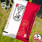 【こめひこ米】新潟米新之助5キロ【あす楽対応】白米・玄米・3分搗き・7分搗き