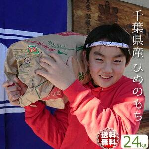 もち米 送料無料【送料無料】千葉県産 ひめのもち 令和2年産 ヒメノモチ 白米24kg