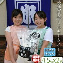 ミルキークイーン 小分け 送料込み 令和元年産 茨城県 一等米 玄米 精米無料(白米9kg)
