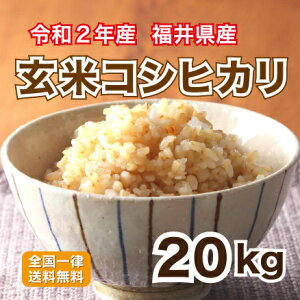 玄米 令和2年産 福井県産コシヒカリ10割 栄養満点 20kg お米 安い 10kg×2 送料無料