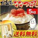 【28年産】北海道産 ななつぼし 5kg [送料無料 白米 お米 ご飯]【TD】【BT】【BS】