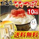 【28年産】北海道産 ななつぼし 10kg(5kg×2袋)[送料無料 白米 お米 ご飯]【TD】【BT】【BS】