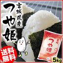宮城県産 つや姫5kg送料無料 30年 30年産 白米 お米 ご飯【TD】【TRS】【メーカー直送品】 米 米5キロ お米5キロ こめ…