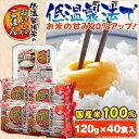 低温製法米のおいしいごはん 120g×40食パック パック米 パックご飯 パックごはん レトルトごはん ご飯 国産米 アイリ…
