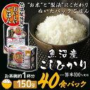 低温製法米のおいしいごはん 魚沼産こしひかり 150g×40食パック パック米 パックご飯 パックごはん レトルトごはん …